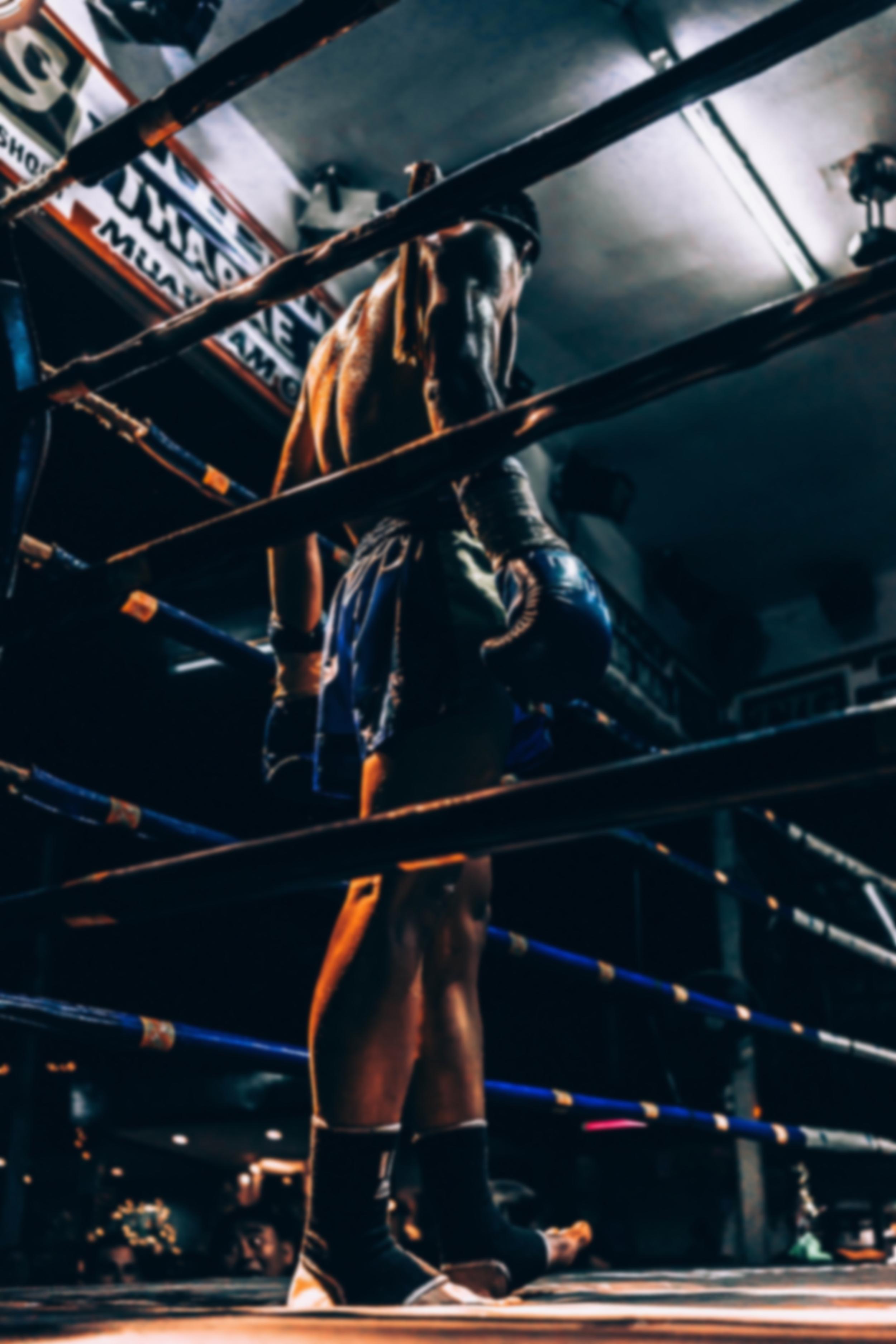 Boxkämpfe 2021